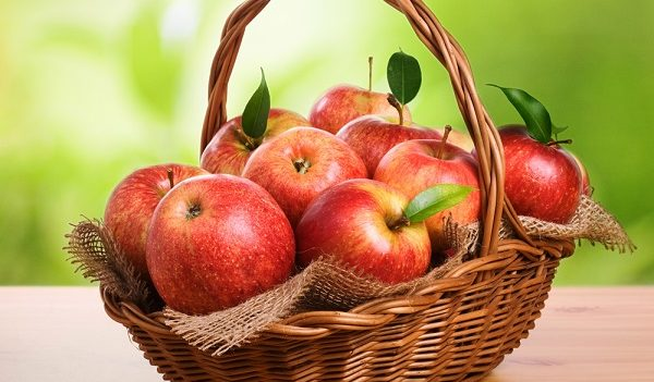 percorso della mela
